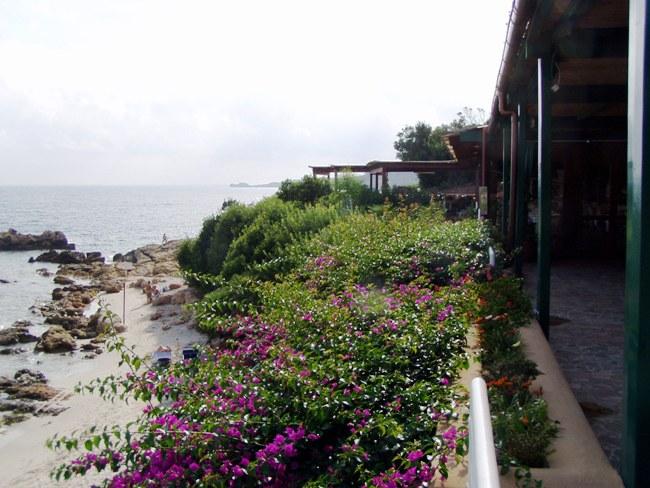 Hotel Dei Pini - Imagen 31