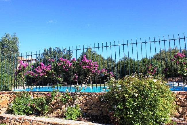 Residence Sardegna Smeralda Suite - Image 2