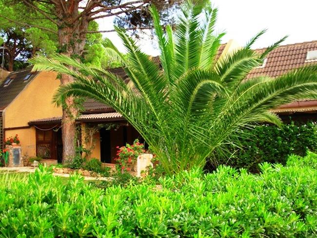 Residence Cala Verde - Image 10