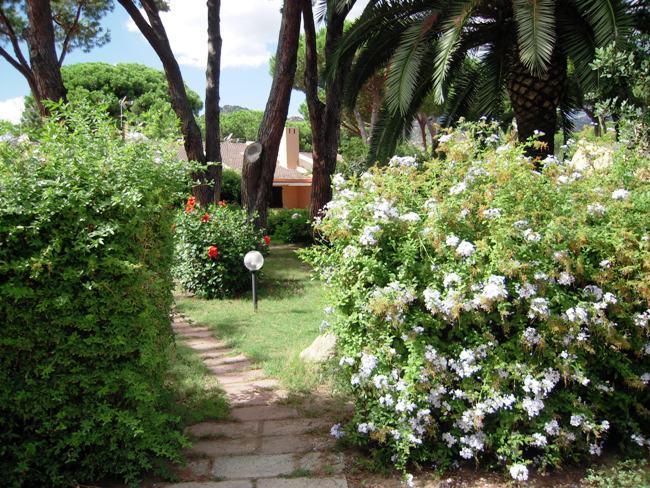 Residence Cala Verde - Image 4
