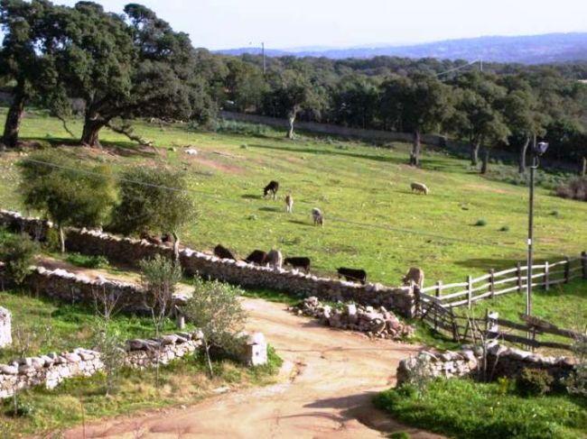 Casa rural Il Muto di Gallura - Imagen 35