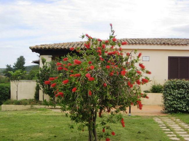 Residencia San Teodoro - Imagen 3